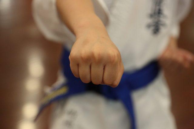 子供習い事格闘技