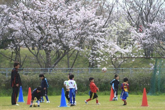 子供の習い事スポーツ少年団
