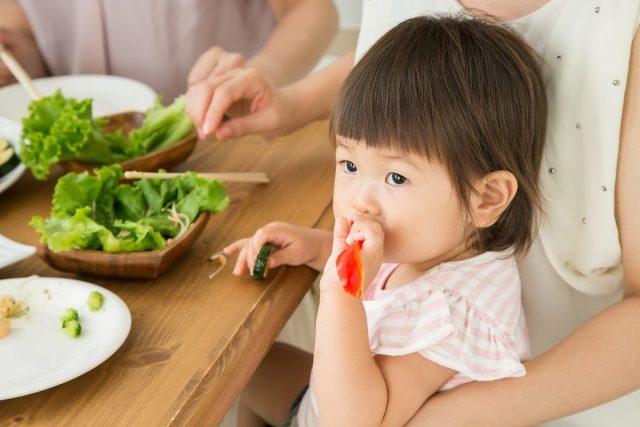 食育と学力の関係
