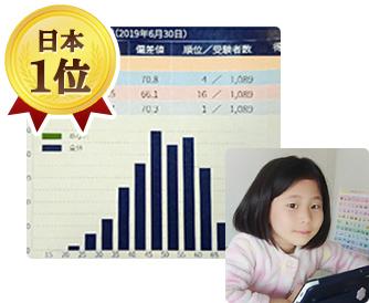 RISU算数の実績