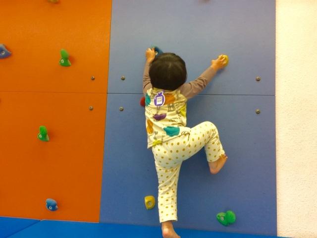 子供の習い事ボルダリング