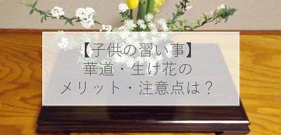 【子供の習い事】華道・生け花の7つのメリット・デメリットは?