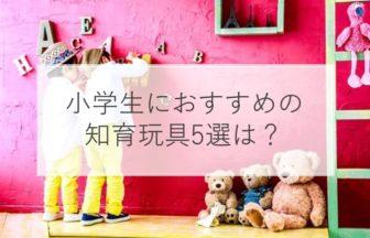 【2020年】小学生におすすめの知育玩具5選は?