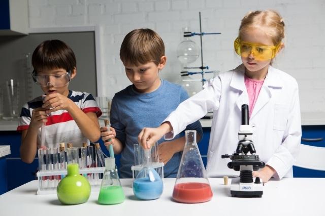 小学生に人気の自由研究ランキング