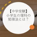 【中学受験】小学生の理科の勉強法とは?分野別・時期別に解説!