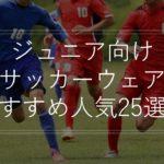 【ジュニア】サッカーウェアおすすめ人気25選!アディダス・ナイキ・上下セット・選び方も解説!