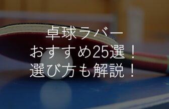卓球ラバーおすすめ人気ランキング25選!初心者・中学生・選び方のコツも解説!