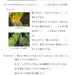 小4理科「季節と生物」の学習プリント | 無料ダウンロード・印刷