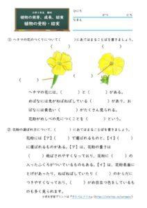 植物の受粉・結実(問題)