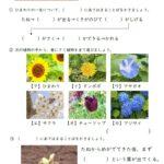 小3理科「身の回りの生物」の学習プリント|無料ダウンロード・印刷
