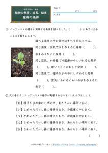 発芽の条件(問題)