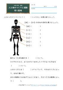 骨と筋肉(問題)