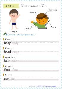 体の英単語学習プリント1