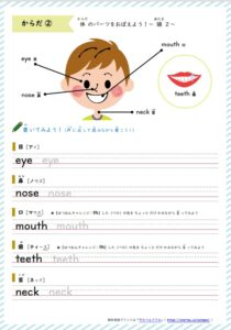 体の英単語学習プリント2