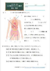 消化・吸収の学習プリント・練習問題