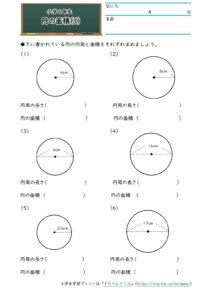 小6円の面積(円の面積)(3)の学習プリント(練習問題・テスト)