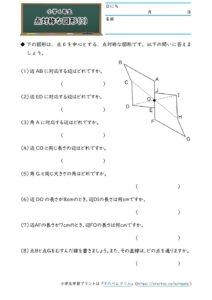 小6対称な図形(点対称な図形)(3)の学習プリント(練習問題・テスト)