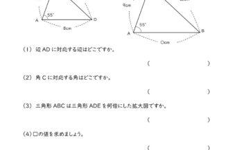 小6算数「拡大図と縮図」学習プリント・練習問題 | 無料ダウンロード印刷