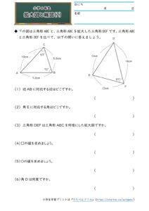 小6拡大図と縮図(拡大図と縮図)(2)の学習プリント(練習問題・テスト)