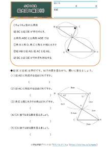 小6拡大図と縮図(拡大図と縮図)(3)の学習プリント(練習問題・テスト)